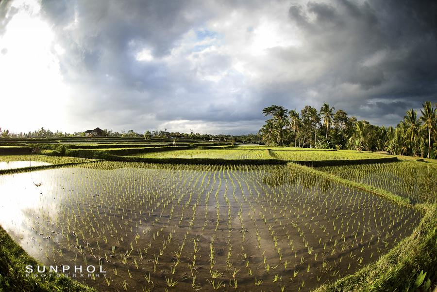 Bali09P2_DSC_0354
