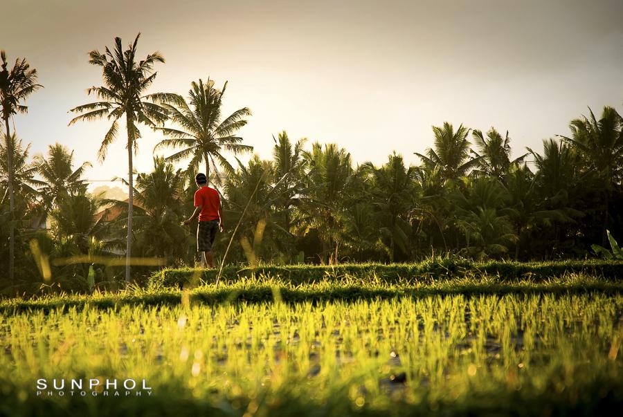 Bali09P2_DSC_0377