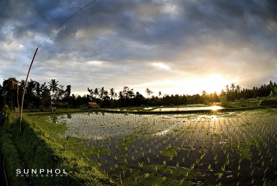 Bali09P2_DSC_0383