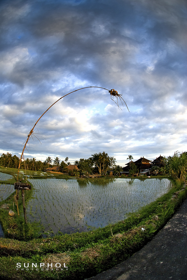 Bali09P2_DSC_0385