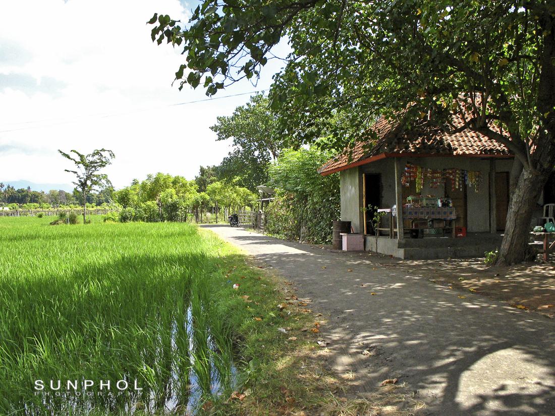 Bali09_Picture 266