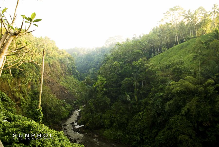 Bali10P3_Bali10-DSC_0266