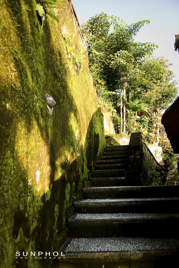 Bali10P3_Bali10-DSC_0275