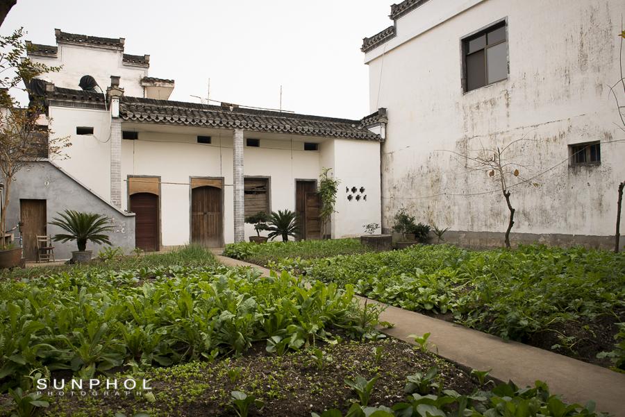 Huangshan_DSC_2868